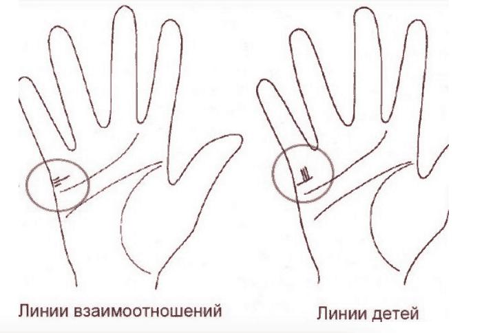 Как по линии на руке узнать сколько будет детей фото