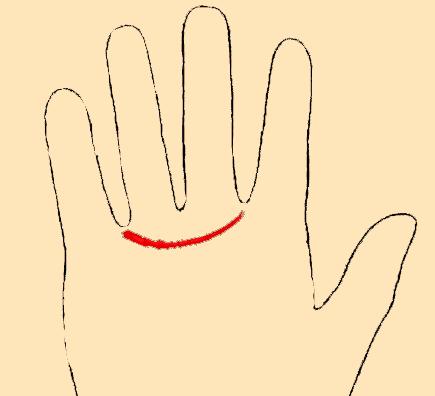 пояс венеры на руке