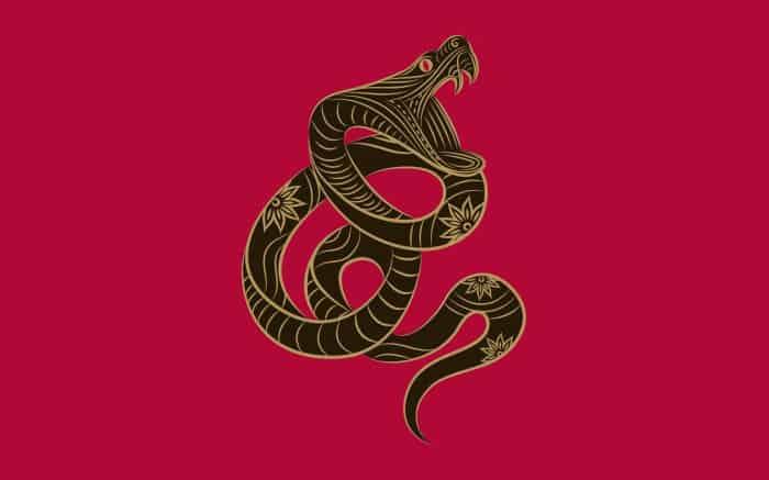 супружеская совместимость змеи и крысы