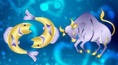телец и рыбы - совместимость в браке