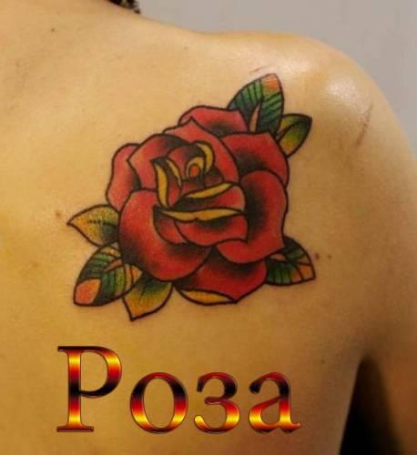 Роза на теле