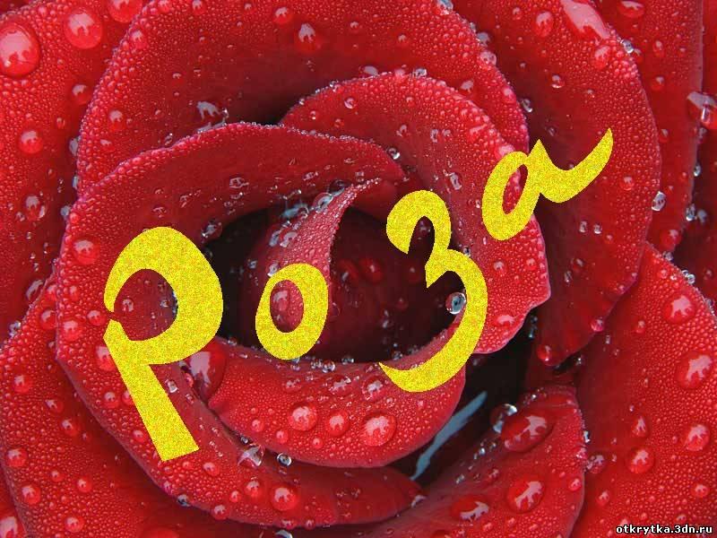 Открытки с днем рождения роза имя, открытки днем рождения
