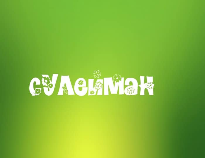 Имя Сулейман