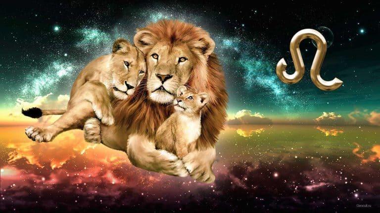 любовный гороскоп на январь 2018 - лев