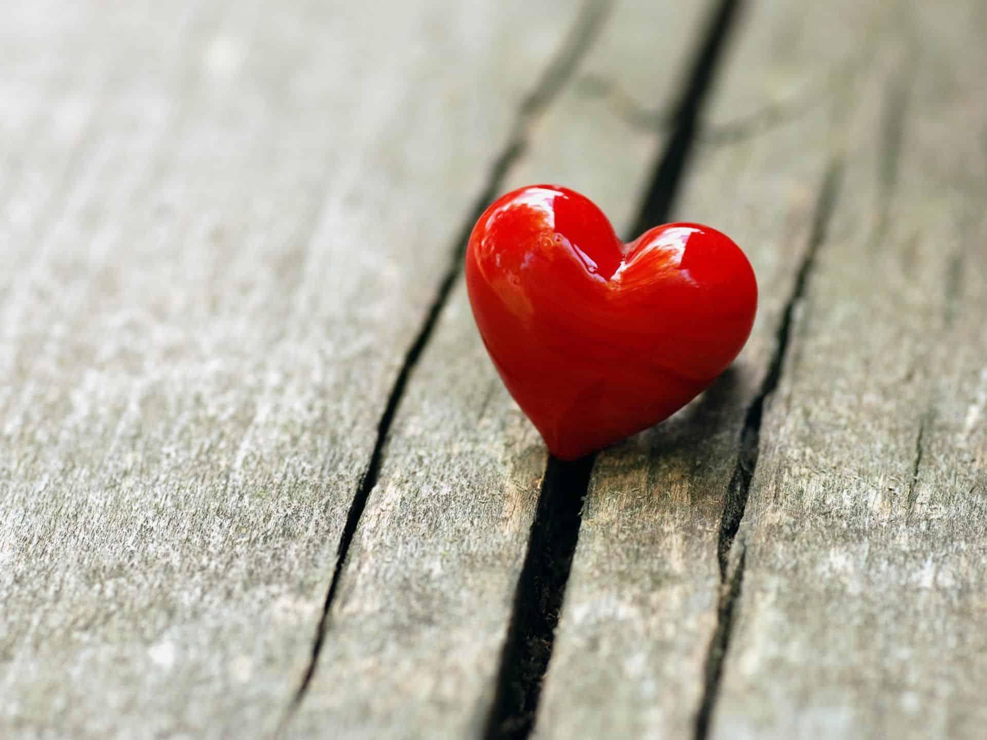 любовная совместимость рак телец