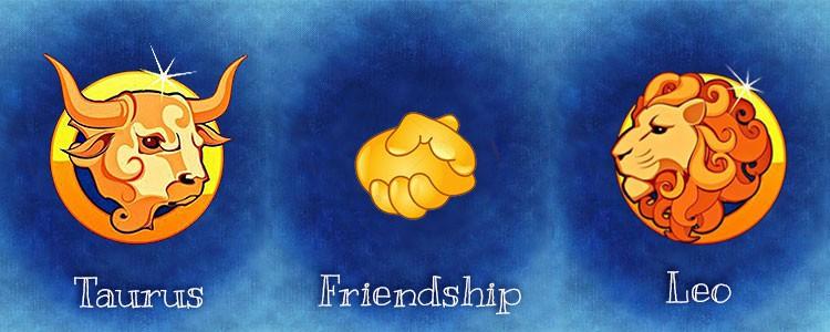 совместимость тельца и льва в дружбе