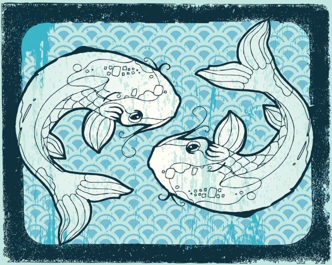 совместимость с рыбами в дружбе