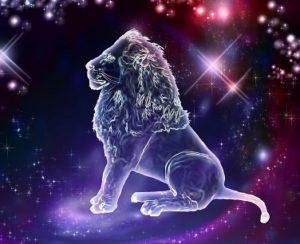 Львы часто очень самоуверенны