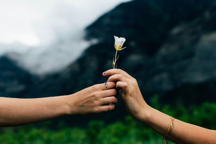 совместимость весы рак в любви