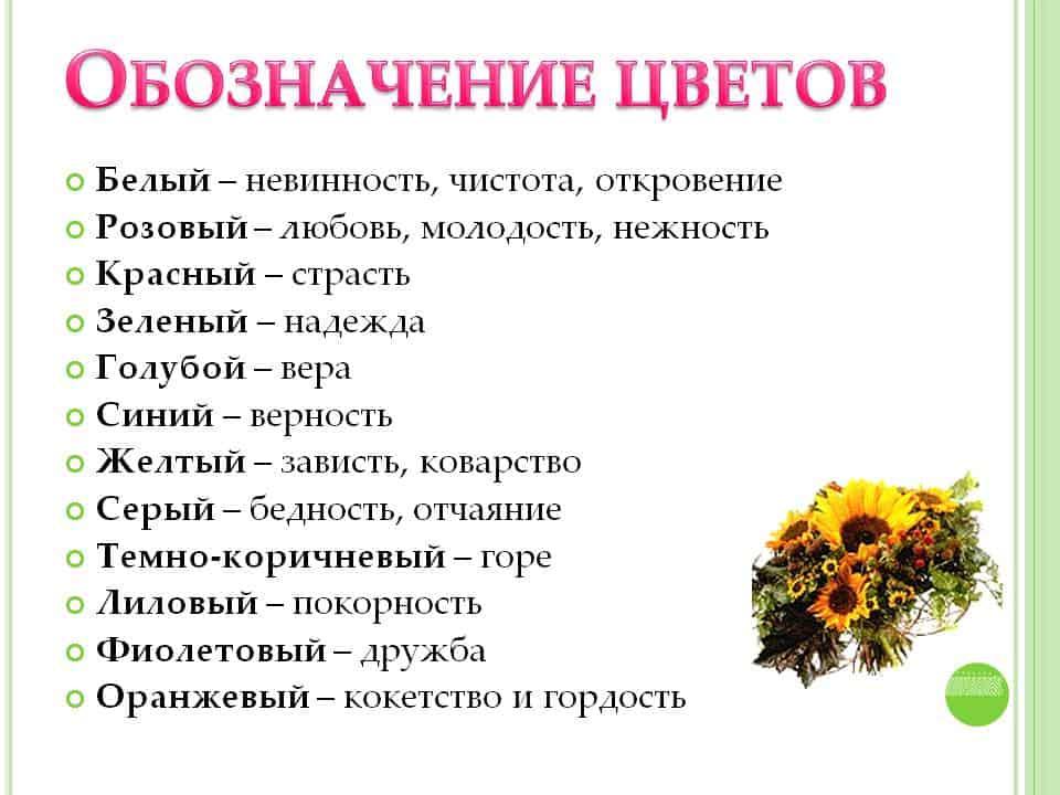 Связка полевых цветочков говорит о появлении в реальной жизни искреннего, душевного и бесхитростного друга, на которого можно положиться.