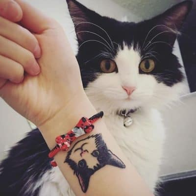 история тату кошка