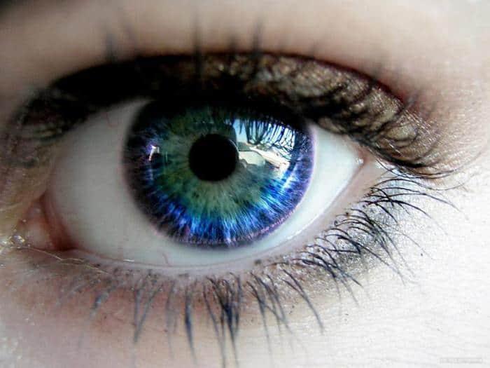 разноцветные глаза - значение