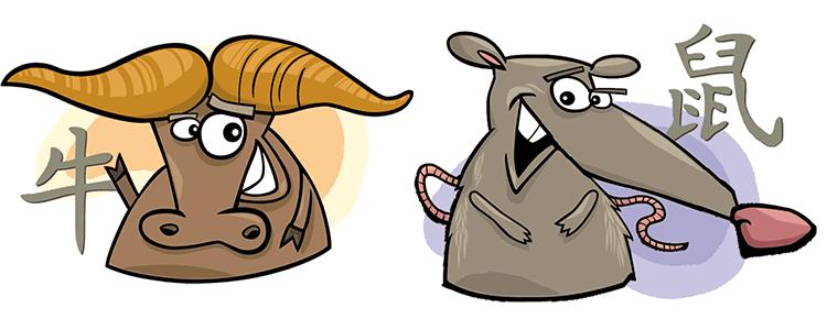 совместимость бык крыса в любви