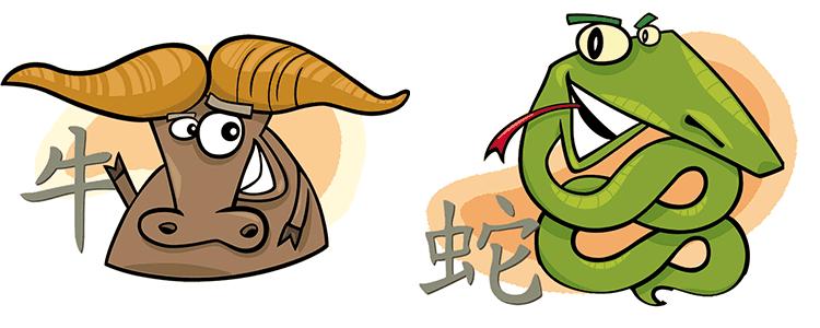 совместимость бык змея