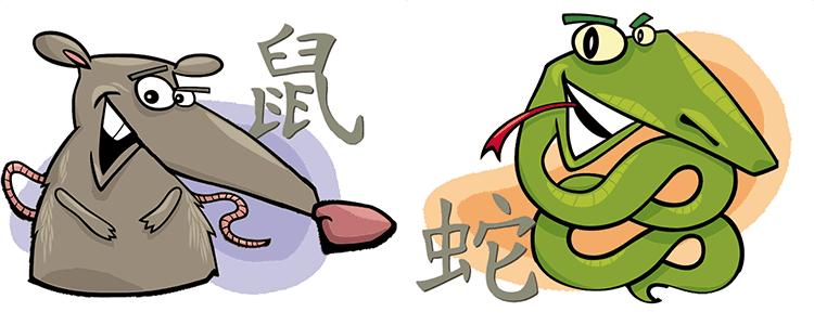 совместимость крыса змея в отношениях