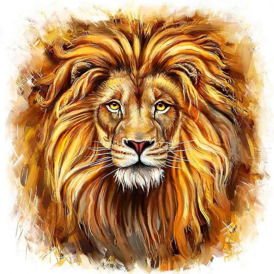 совместимость лев лев в отношениях