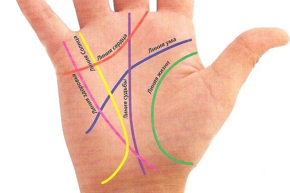 Линия жизни на ладони: на какой руке смотреть и как расшифровать фото