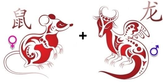 совместимость дракон крыса в любви