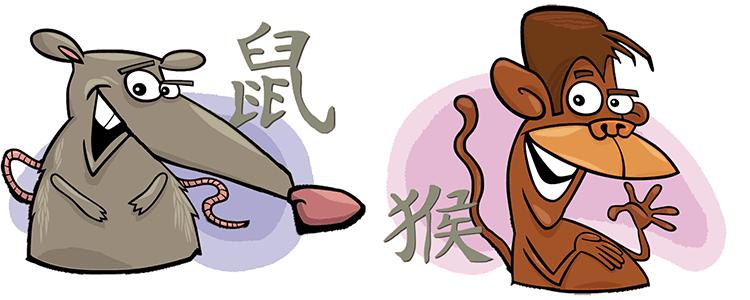 совместимость обезьяна крыса в любви