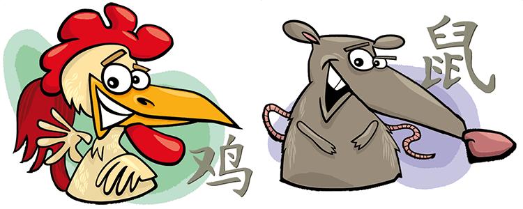 совместимость петух крыса