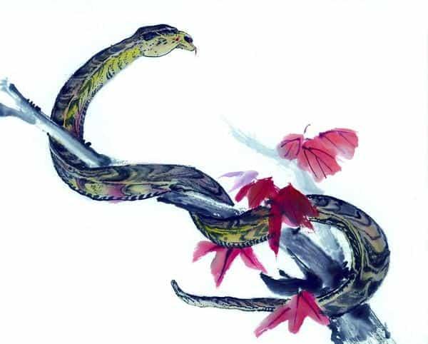 совместимость петух змея в любви