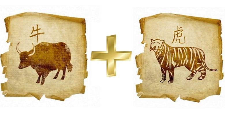 совместимость тигр бык