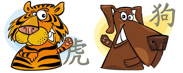 совместимость тигр собака в отношениях