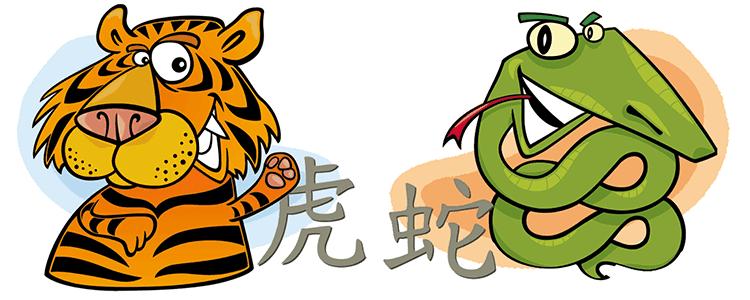 совместимость тигр змея в любви