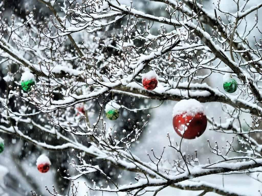 чьи именины приходятся на декабрь-месяц