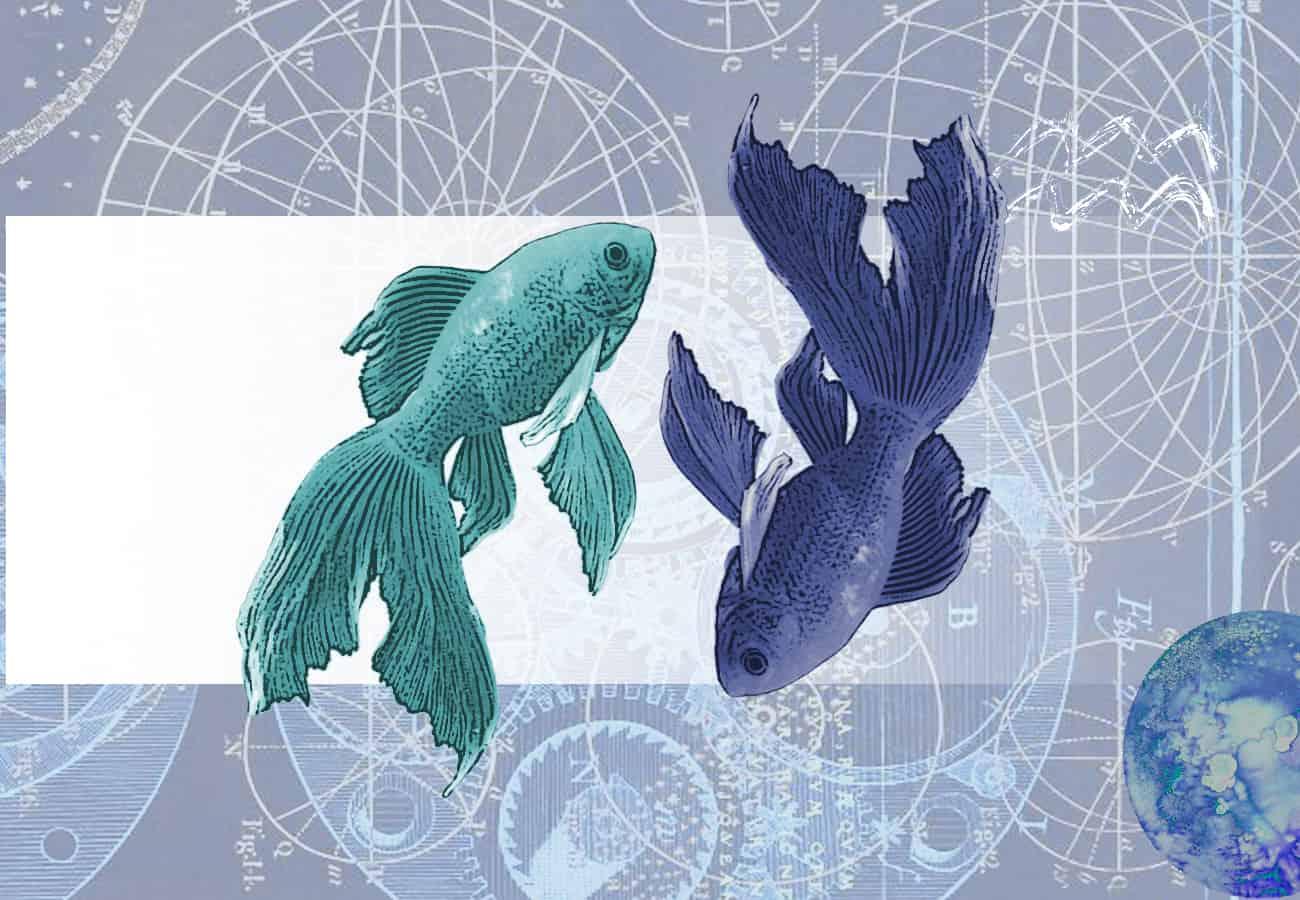 Гороскоп для Рыб на 2019 год