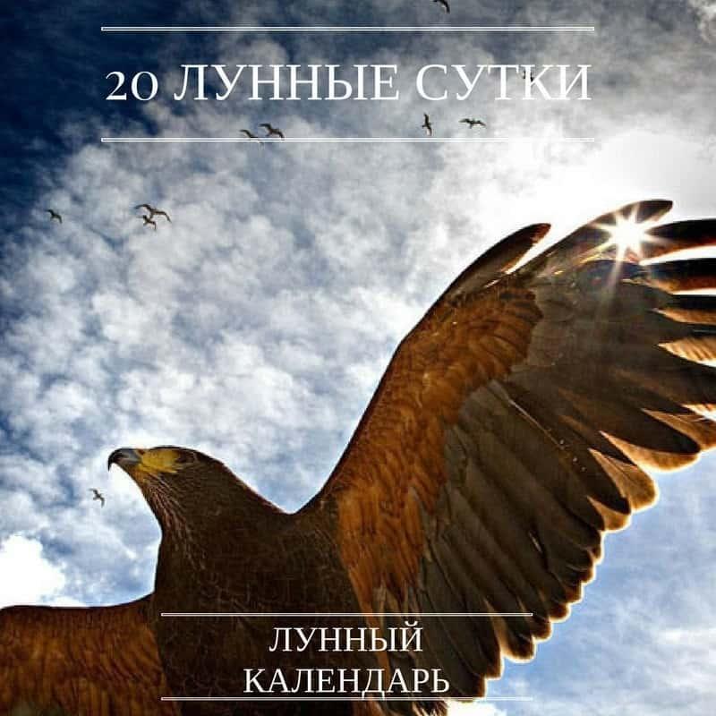 20 лунный день, его символ Орёл