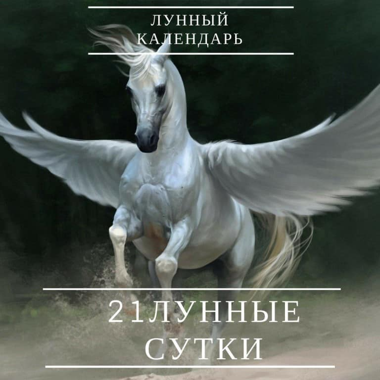 символика дня связана с лошадьми