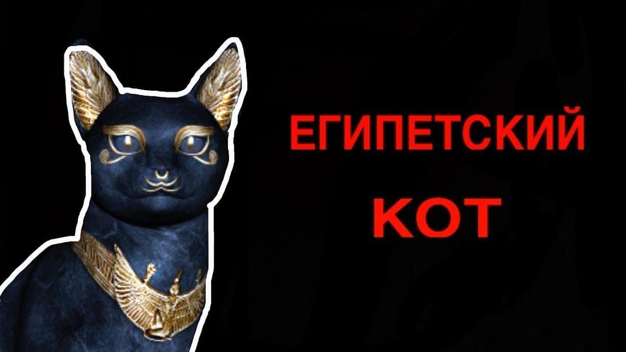 Как вызвать египетского кота, исполняющего желания