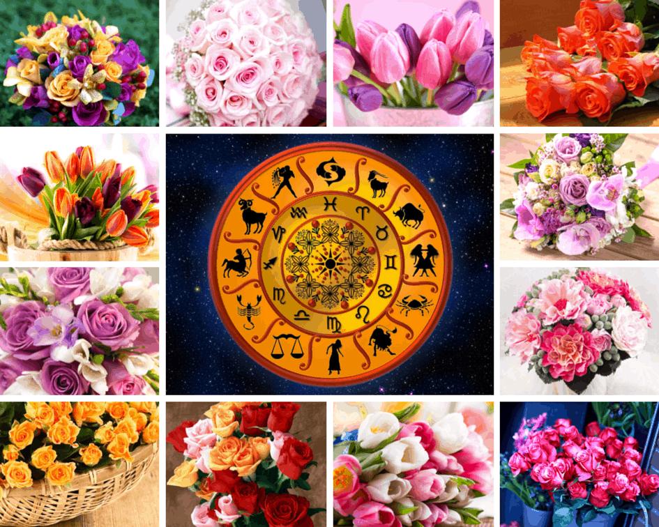 Цветочный гороскоп: особенности, характеристика знаков
