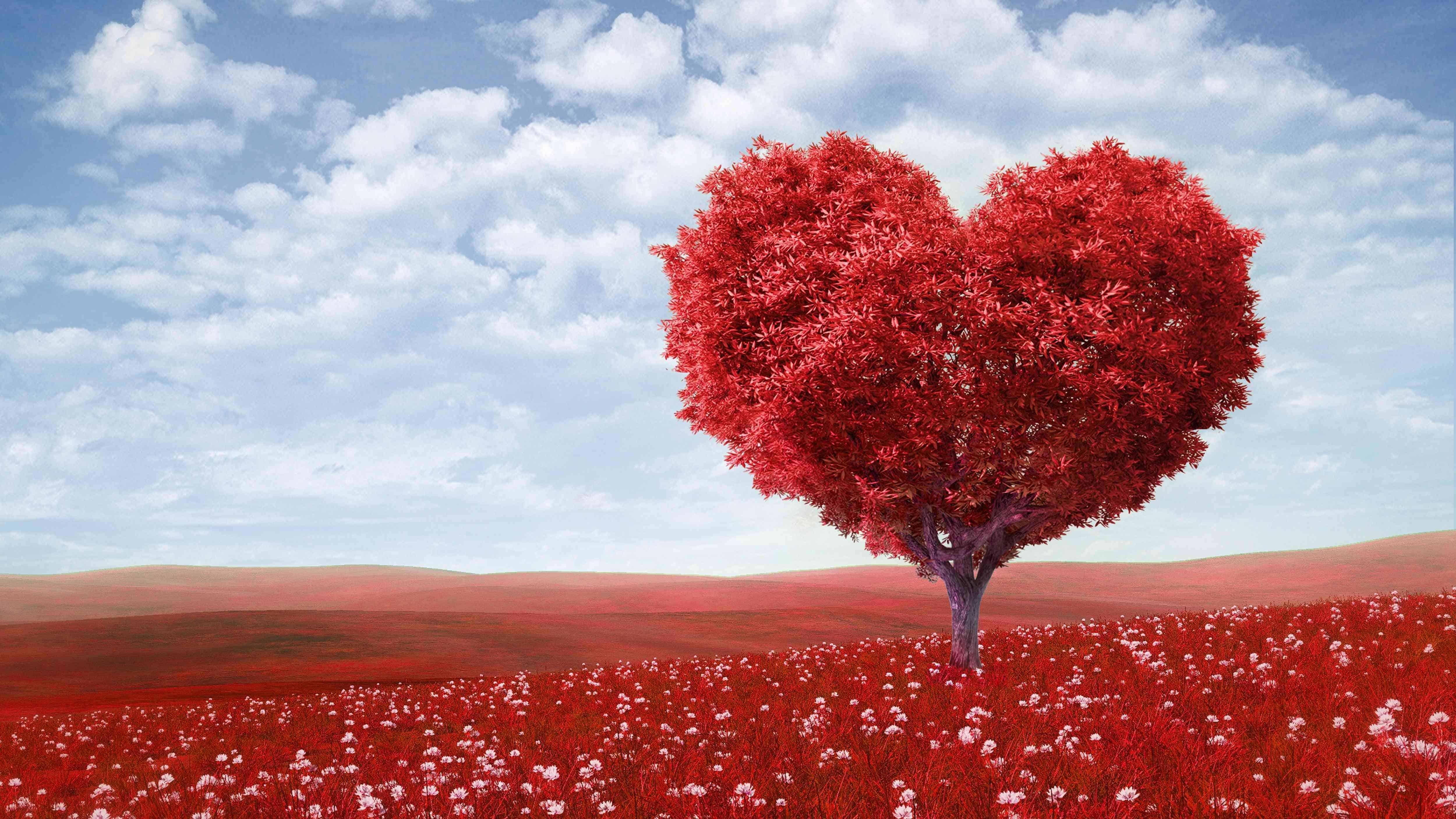 что символизирует любовь