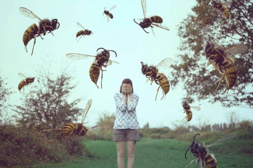 К чему снятся осы - очень много