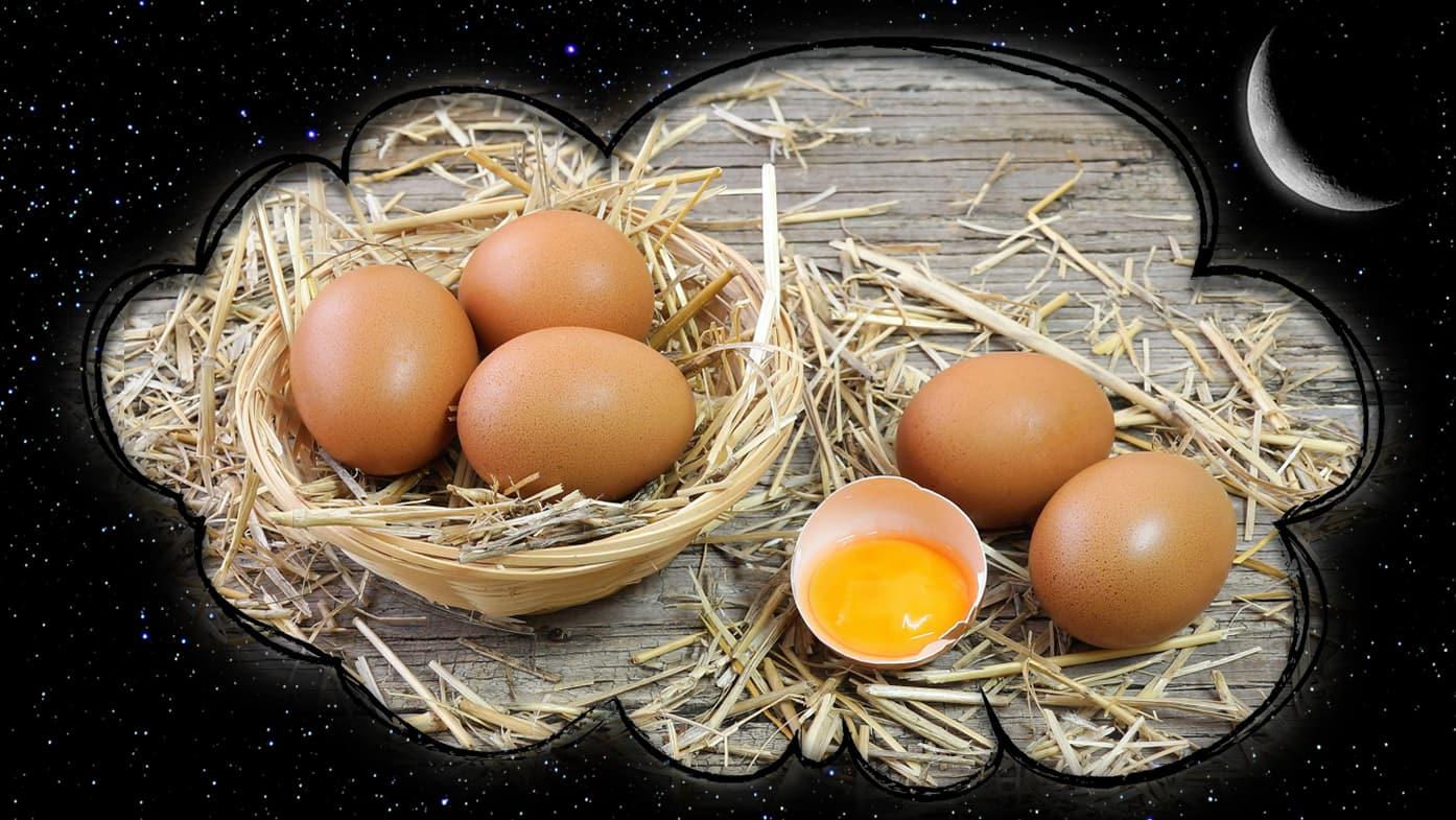 К чему снятся куриные яйца - сонник