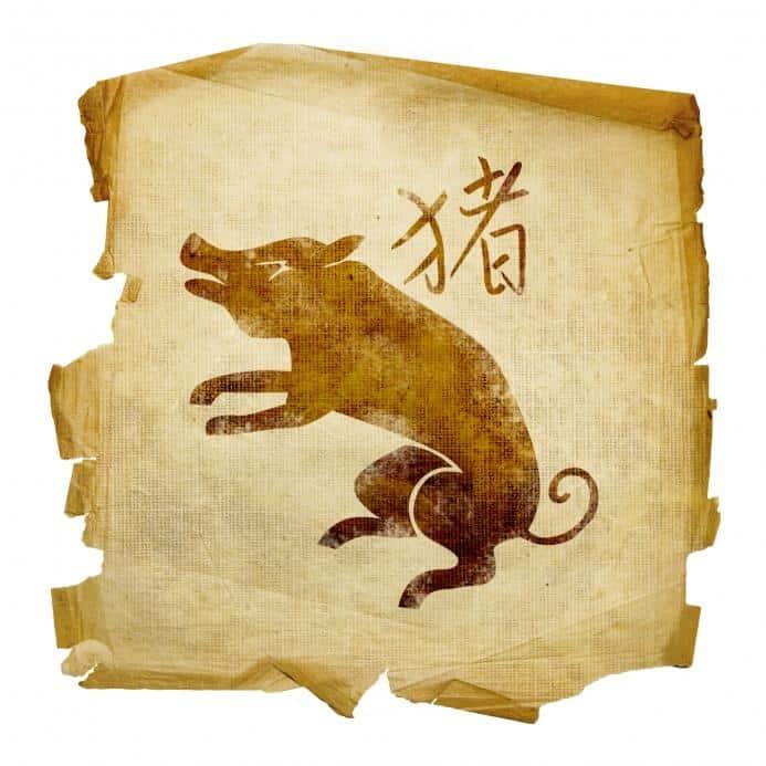 знак Кабана восточный гороскоп