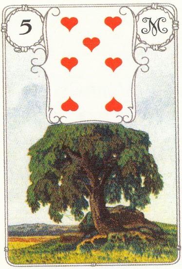 Дерево, 7 червей