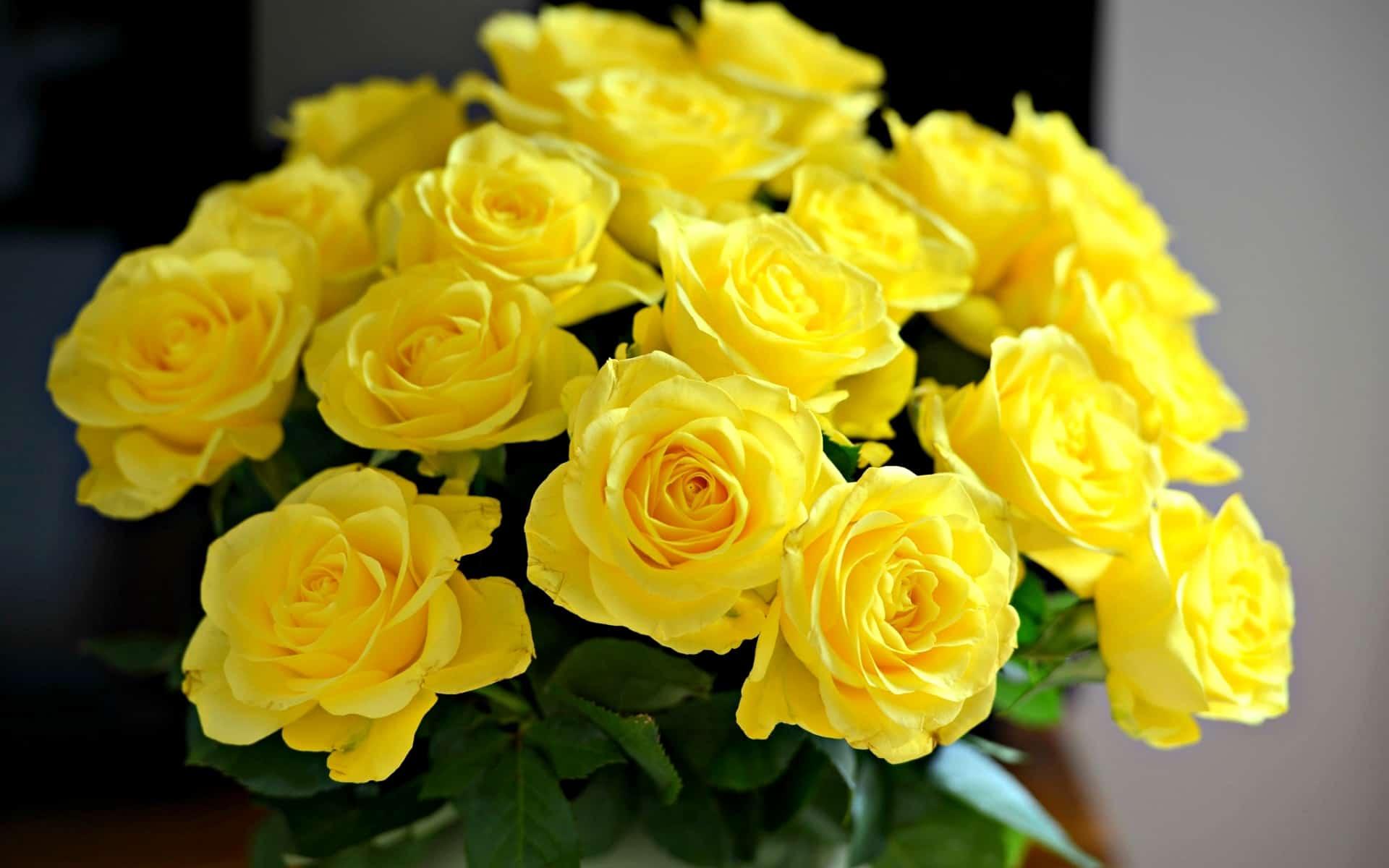можно ли дарить жёлтые розы?