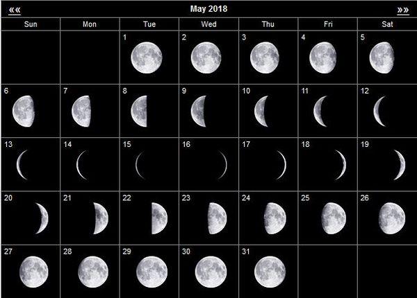 Лунный посевной календарь на май 2019 года для садовода и огородника