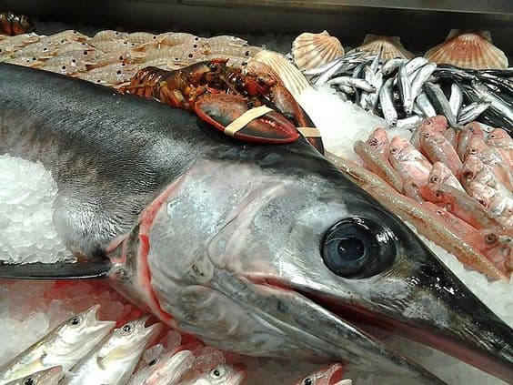 К чему снится много рыбы - толкования по сонникам