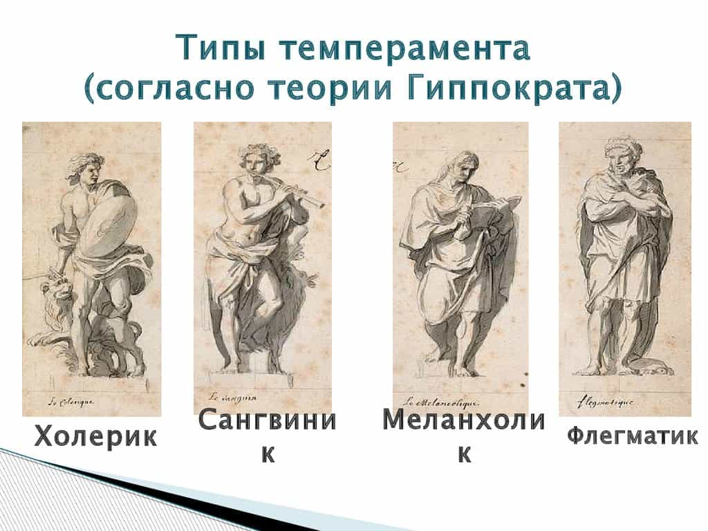 типы темперамента Гиппократа