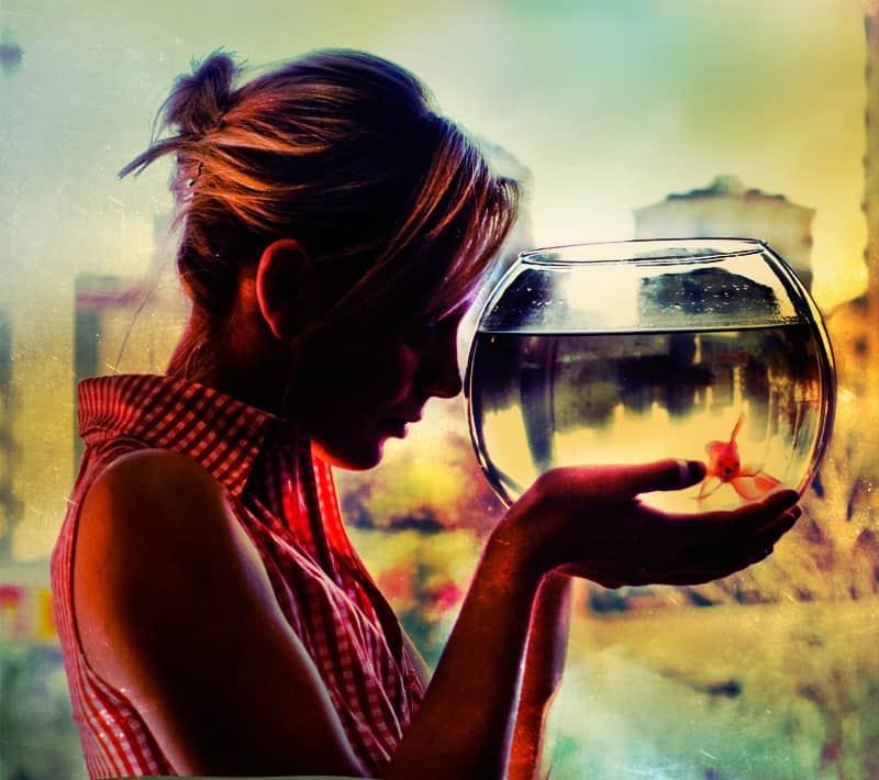 Женщина-Дева и мужчина-Рыбы – совместимость в любви, отношениях, браке, сексе, дружбе