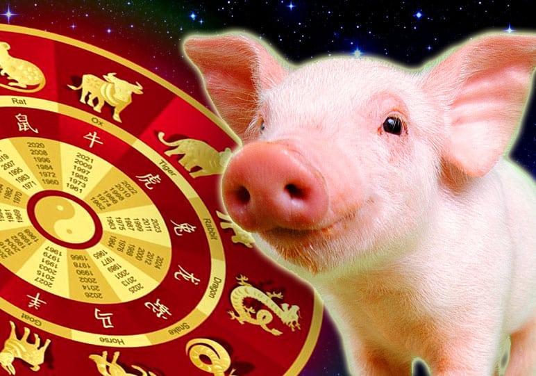 1971 год какого животного по гороскопу