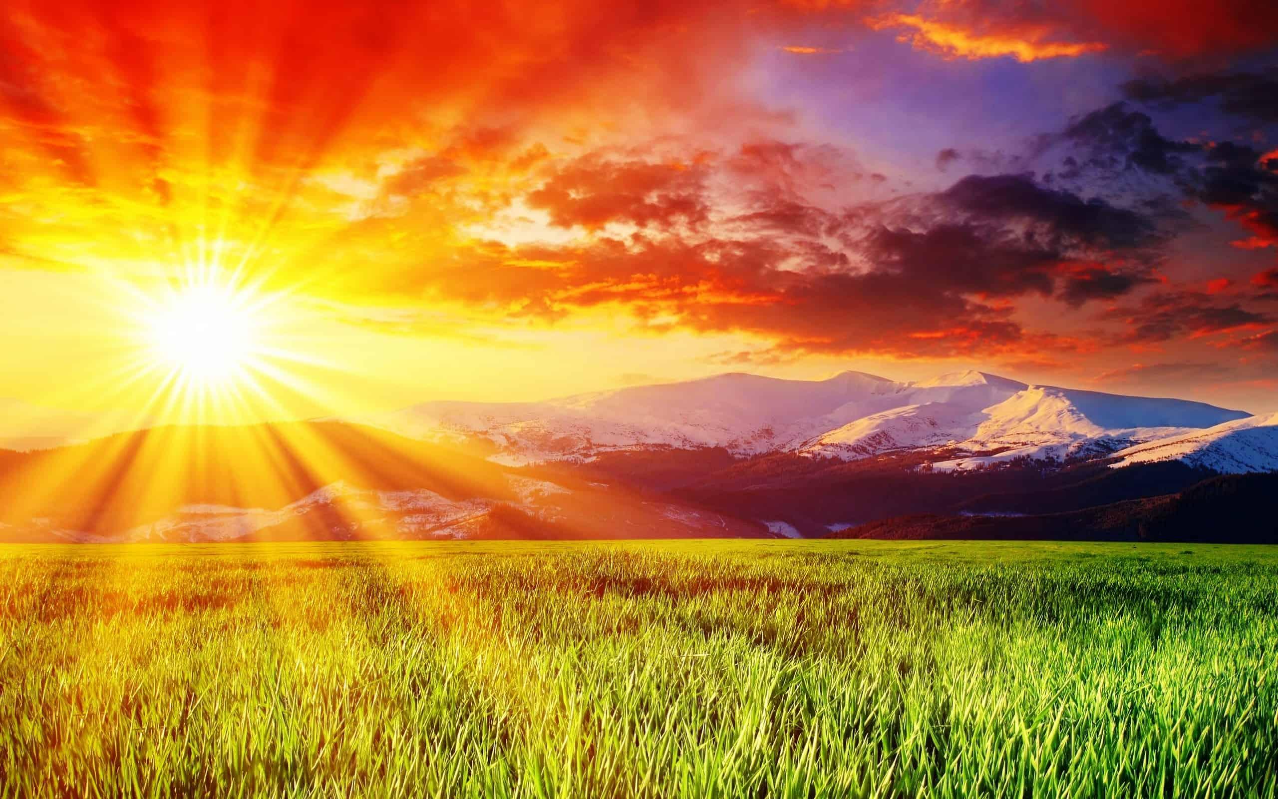 Солнце в 1 доме астрология