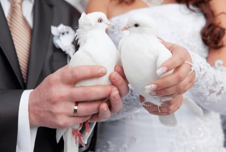 Годовщины свадьбы: какая свадьба в сколько лет