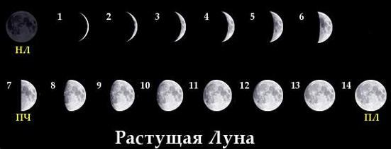 январь 2020 года: фазы луны