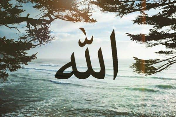 во многих именах прославляется Аллах