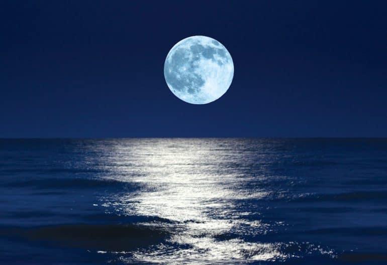 фазы Луны влияют на всё в природе